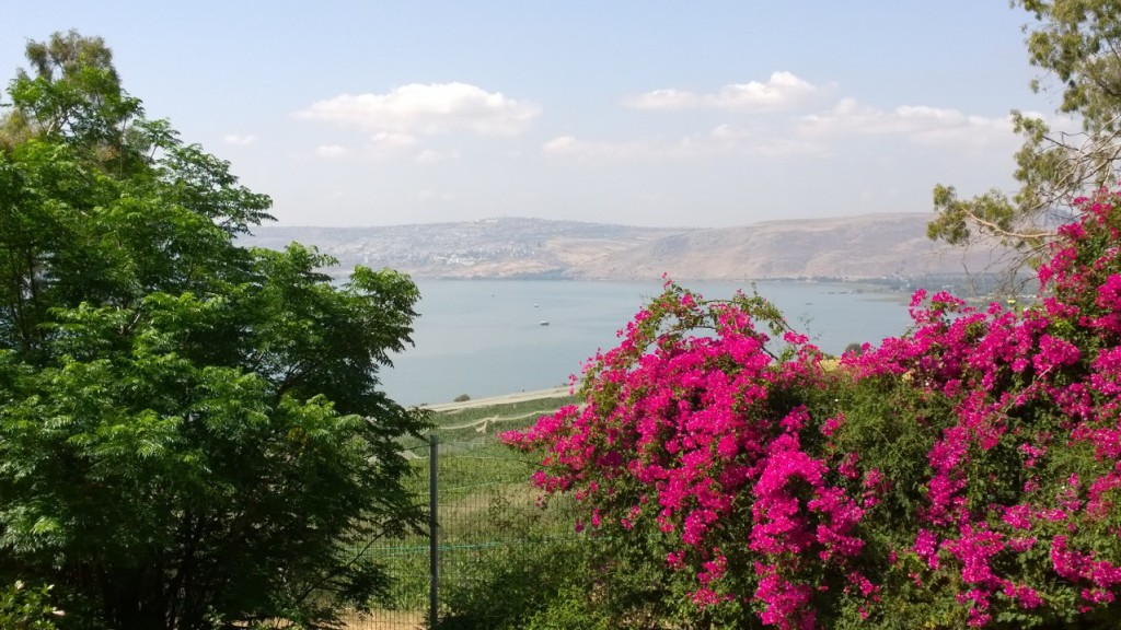 Looking over the Sea of Galilee from the Mount of Beatitudes. Photo: Marge Fenelon